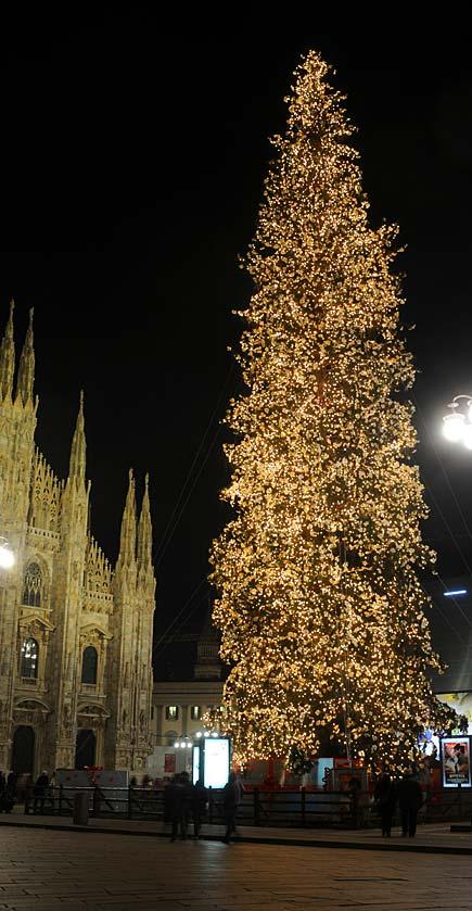 Albero di Natale davanti al duomo di Milano