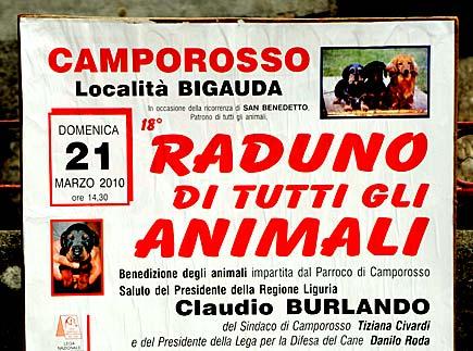 Burlando benedizione animali