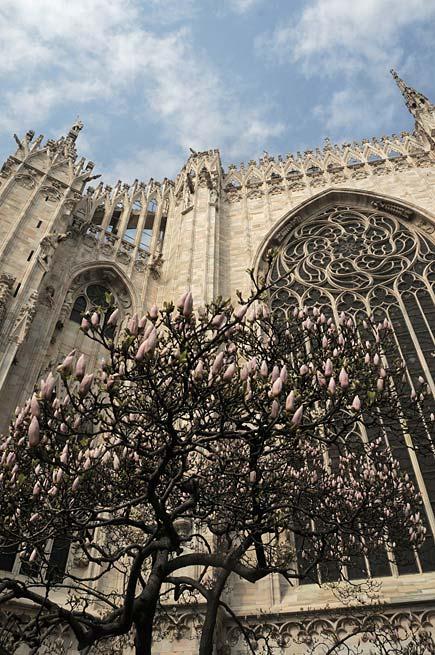 Abside del duomo di Milano a primavera