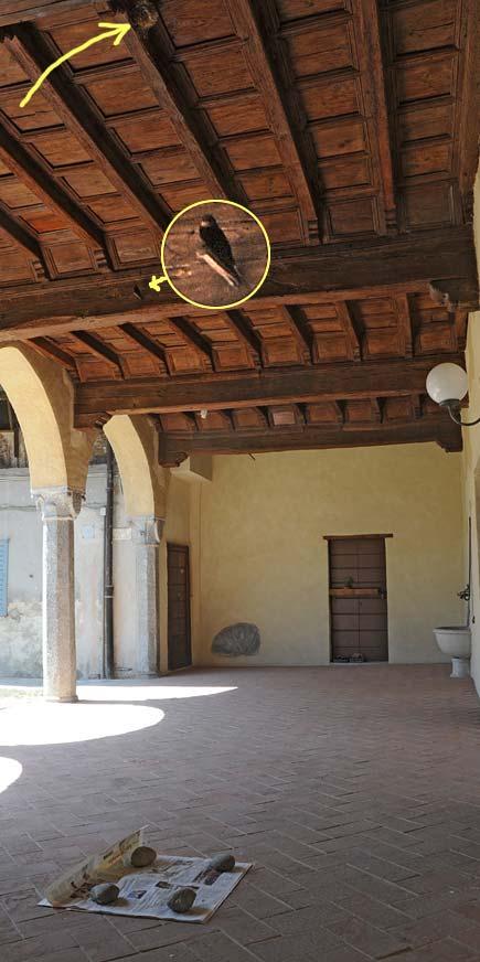 Portico della casa antica di via Berra a Milano