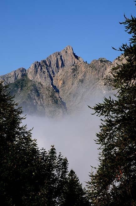 Il Monte Toraggio visto da Melosa